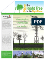 Plant the Right Tree Guide