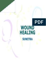 05 2 Wound Healing