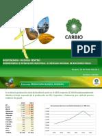 4-El-mercado-mundial-de-los-biocombustibles-Víctor-Castro.pdf