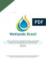 Boletim n°3 Wetlands Brasil