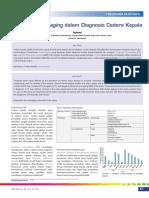 07_249Peran Neuroimaging dalam Diagnosis Cedera Kepala.pdf