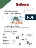 1593 Mosquito