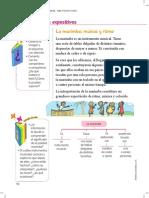 TE_VEN_ENLACE LENGUA 2 PRIM_2.pdf