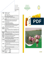 fiche-oignon.pdf
