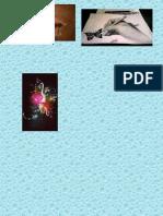 collage de expre.pptx