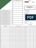 anexo-3b-registro-de-evaluacion-y-notas.xlsx