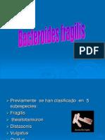 15 Bacteroides Fragilis