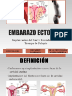 Embarazoectopico Delacruznovoamariagabriela 150801220507 Lva1 App6891 (1)