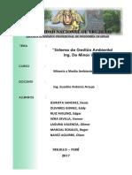 Informe Sga Minas unt