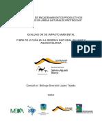 EIA VICUÑA.pdf
