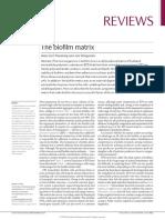 Paper 2 Taller 5.pdf