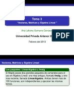 Tema 3 Vectores, Matrices y Álgebra Lineal