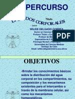 2.supercurso__liquidos_corporales.ppt