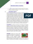 Informe  Hongos y Levaduras