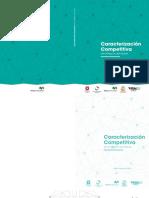 Caracterización-Competitiva-del-Maule-pdf