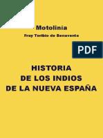 Motolinia - Historia de los indios de la Nueva España.pdf 943b30050f17