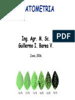patometriaincidenciayseveridad-130418194009-phpapp01