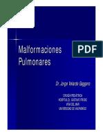 malformaciones.pdf