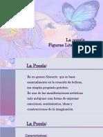 Poesia y Figuras Literarias 2