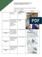 PROTOCOLOS-EJERCICIO-TERPAEUTICO.pdf