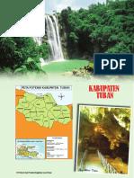 kab-tuban-2013.pdf
