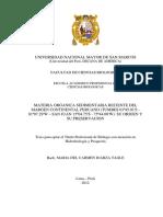 Tesis+UNMSM+Licenciatura
