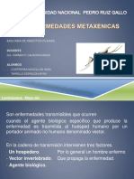 enfermedadesmetaxenicas-140522195205-phpapp01.pdf