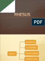 rhesuskelompok2-121108203451-phpapp01