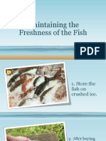 Maintaining the Freshness of the Fish