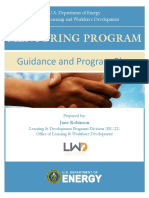 DOE_Mentoring Guidance Pgrm Plan2_0