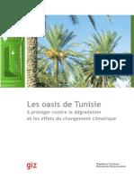 Les-oasis-de-Tunisie-à-protéger-contre-le-changement-climatique