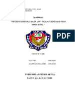 hastiwi dan maryam obstetri infeksi purperalis.docx