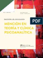 Programa Magisterpsicoanalisis 2017