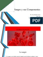 Presentaciyyn Rosa Hiraldo La Sangre y Sus Componentes