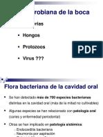 TEMA 38 DIAPOSITIVAS Flora y Mec Defensa Boca (1)