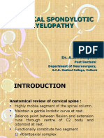 Cervical Spondylotic Myelopathy (11.08.2010)