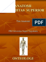 EXTREMITAS+SUPERIOR