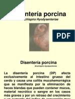 DISENTERIA PORCINA