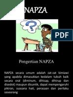 pptnapza-160526030227