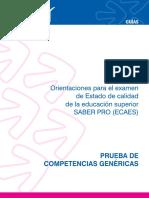 Competencias Ecaes.pdf1
