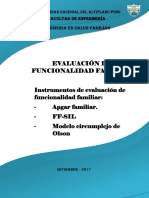 Evaluacion de La Funcionalidad Familiar - Dianeth Liz Chino Flores