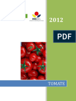 Proyecto Competitividad Tomate