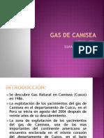 Gas de Camisea