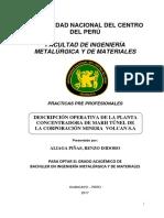 Practicas Pre Profesional de Ingenieria Metalurgica 2017 Aliaga Renzo[1]