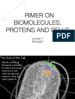 Lecture 7 Primer on Biomolecules Cells and Proteins