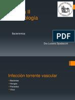 Bacteriemia 2