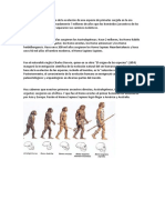 El Ser Humano Es Producto de La Evolución de Una Especie de Primates Surgida en La Era Terciaria - Copia