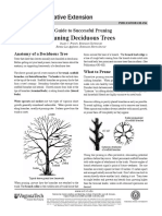 A Guide to Successful Pruning_430-456_pdf