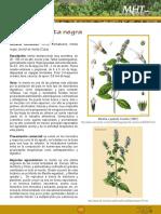 7d99ff5a580ddbd7e04001011f016dc3.pdf