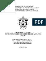SM 111 FUN DE PSICOTERAPIA DE ADULTOS 2014.doc